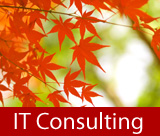milwaukee wisconsin it consultant